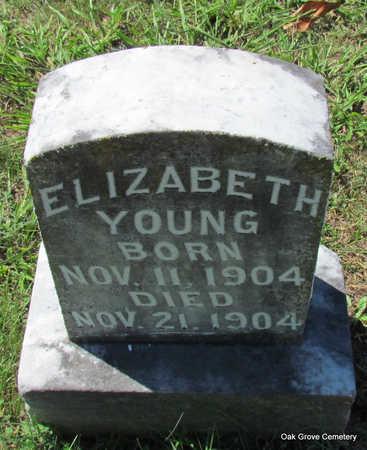 YOUNG, ELIZABETH - Faulkner County, Arkansas | ELIZABETH YOUNG - Arkansas Gravestone Photos