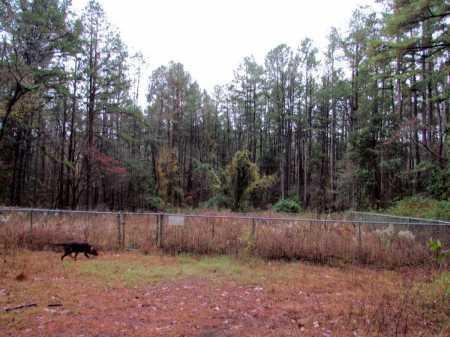 *OVERVIEW,  - Franklin County, Arkansas |  *OVERVIEW - Arkansas Gravestone Photos