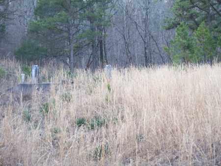 *CASS CEMETERY VIEW,  - Franklin County, Arkansas |  *CASS CEMETERY VIEW - Arkansas Gravestone Photos