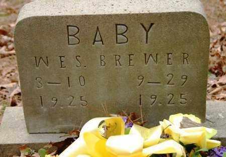 BREWER, WES - Franklin County, Arkansas   WES BREWER - Arkansas Gravestone Photos