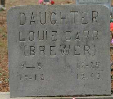 CARR, LOUIE - Franklin County, Arkansas | LOUIE CARR - Arkansas Gravestone Photos