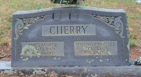 MOSLEY CHERRY, MARGARET - Franklin County, Arkansas | MARGARET MOSLEY CHERRY - Arkansas Gravestone Photos