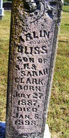 CLARK, ARLIN BLISS - Franklin County, Arkansas | ARLIN BLISS CLARK - Arkansas Gravestone Photos