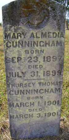CUNNINGHAM, THURSEY THOMAS - Franklin County, Arkansas | THURSEY THOMAS CUNNINGHAM - Arkansas Gravestone Photos