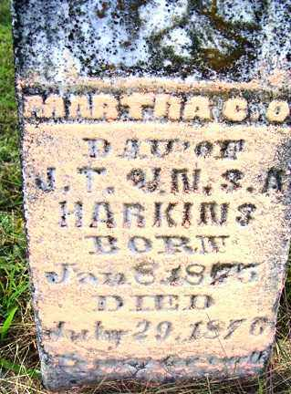 HARKINS, MARTHA C. O. - Franklin County, Arkansas   MARTHA C. O. HARKINS - Arkansas Gravestone Photos