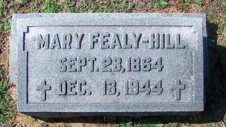 FEALY HILL, MARY - Franklin County, Arkansas | MARY FEALY HILL - Arkansas Gravestone Photos