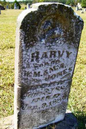 JONES, HARVY - Franklin County, Arkansas | HARVY JONES - Arkansas Gravestone Photos