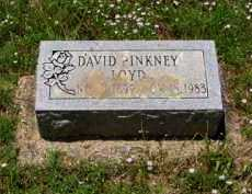 LOYD, DAVD PINKNEY - Franklin County, Arkansas | DAVD PINKNEY LOYD - Arkansas Gravestone Photos