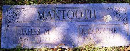 MANTOOTH, JAMES M. - Franklin County, Arkansas | JAMES M. MANTOOTH - Arkansas Gravestone Photos