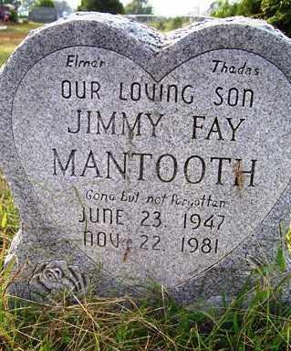 MANTOOTH, JIMMY FAY - Franklin County, Arkansas | JIMMY FAY MANTOOTH - Arkansas Gravestone Photos