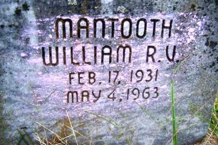 MANTOOTH, WILLIAM R.V. - Franklin County, Arkansas | WILLIAM R.V. MANTOOTH - Arkansas Gravestone Photos