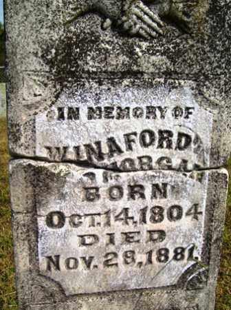 MORGAN, WINAFORD - Franklin County, Arkansas | WINAFORD MORGAN - Arkansas Gravestone Photos