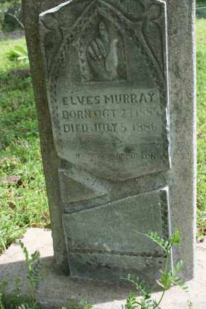 MURRAY, ELVES - Franklin County, Arkansas | ELVES MURRAY - Arkansas Gravestone Photos