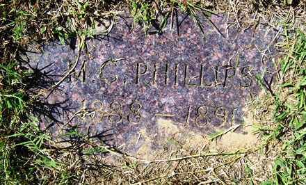 PHILLIPS, M. C. - Franklin County, Arkansas | M. C. PHILLIPS - Arkansas Gravestone Photos