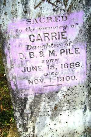 PILE, CARRIE - Franklin County, Arkansas   CARRIE PILE - Arkansas Gravestone Photos