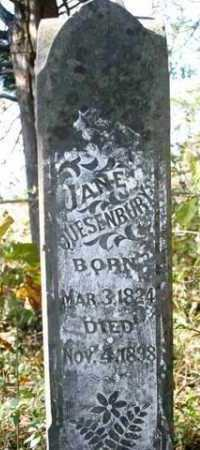 QUESENBURY, JANE - Franklin County, Arkansas | JANE QUESENBURY - Arkansas Gravestone Photos