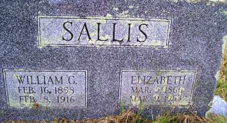 HOYLE SALLIS, MARIA ELIZABETH - Franklin County, Arkansas | MARIA ELIZABETH HOYLE SALLIS - Arkansas Gravestone Photos