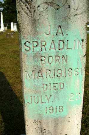 SPRADLIN, J. A. - Franklin County, Arkansas | J. A. SPRADLIN - Arkansas Gravestone Photos
