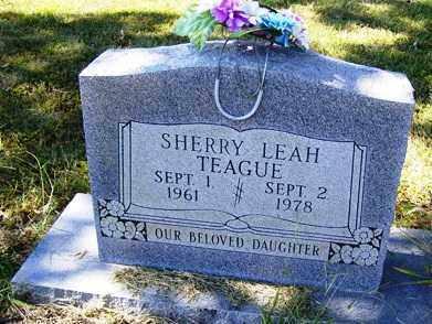 TEAGUE, SHERRY LEAH - Franklin County, Arkansas | SHERRY LEAH TEAGUE - Arkansas Gravestone Photos