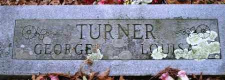 TURNER, GEORGE - Franklin County, Arkansas | GEORGE TURNER - Arkansas Gravestone Photos