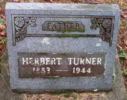 TURNER, HERBERT - Franklin County, Arkansas | HERBERT TURNER - Arkansas Gravestone Photos