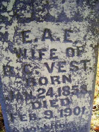 VEST, E  A  E - Franklin County, Arkansas | E  A  E VEST - Arkansas Gravestone Photos