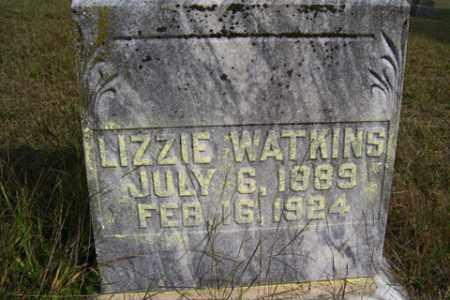 WATKINS, LIZZIE - Franklin County, Arkansas | LIZZIE WATKINS - Arkansas Gravestone Photos