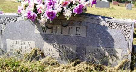 RICE WHITE, DELIA - Franklin County, Arkansas | DELIA RICE WHITE - Arkansas Gravestone Photos