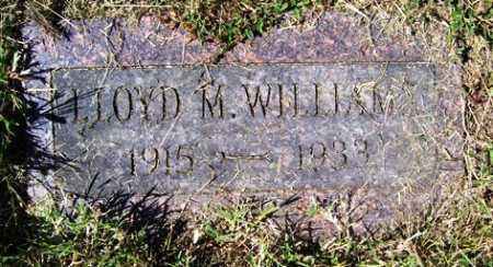 WILLIAMS, LLOYD M. - Franklin County, Arkansas | LLOYD M. WILLIAMS - Arkansas Gravestone Photos