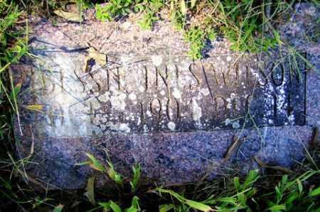 WILSON, BESSIE INIS - Franklin County, Arkansas | BESSIE INIS WILSON - Arkansas Gravestone Photos