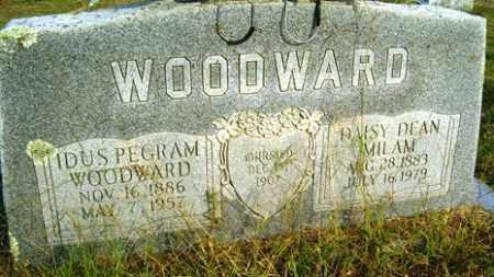 MILAM WOODWARD, DAISY DEAN - Franklin County, Arkansas | DAISY DEAN MILAM WOODWARD - Arkansas Gravestone Photos