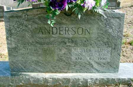 ANDERSON, BUSTER JAMES - Fulton County, Arkansas | BUSTER JAMES ANDERSON - Arkansas Gravestone Photos