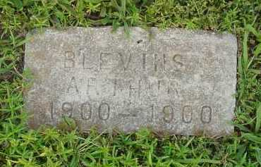 BLEVINS, ARTHUR - Fulton County, Arkansas | ARTHUR BLEVINS - Arkansas Gravestone Photos