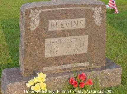 BLEVINS, JAMES STEVE - Fulton County, Arkansas   JAMES STEVE BLEVINS - Arkansas Gravestone Photos