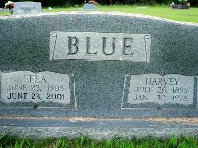 BLUE, HARVEY - Fulton County, Arkansas | HARVEY BLUE - Arkansas Gravestone Photos