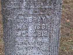 BRAY, JAMES CALVIN - Fulton County, Arkansas   JAMES CALVIN BRAY - Arkansas Gravestone Photos