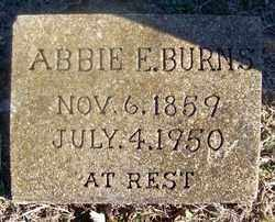 BURNS, ABBIE E. - Fulton County, Arkansas | ABBIE E. BURNS - Arkansas Gravestone Photos