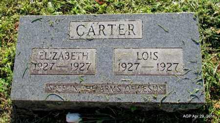 CARTER, ELIZABETH - Fulton County, Arkansas | ELIZABETH CARTER - Arkansas Gravestone Photos