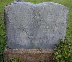 COTTER, ALZERIA ALICE - Fulton County, Arkansas   ALZERIA ALICE COTTER - Arkansas Gravestone Photos