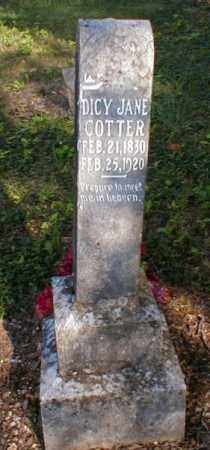 COTTER, DICY JANE - Fulton County, Arkansas | DICY JANE COTTER - Arkansas Gravestone Photos
