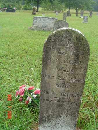 GAULT, T. C. - Fulton County, Arkansas   T. C. GAULT - Arkansas Gravestone Photos
