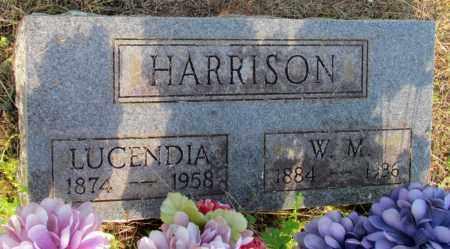 HARRISON, W M - Fulton County, Arkansas | W M HARRISON - Arkansas Gravestone Photos