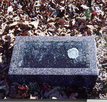 HOBSON, OLIVE JANE - Fulton County, Arkansas | OLIVE JANE HOBSON - Arkansas Gravestone Photos