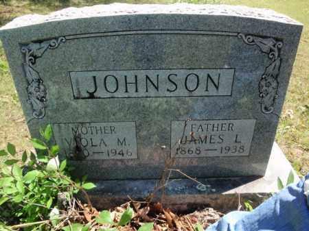 JOHNSON, JAMES L - Fulton County, Arkansas | JAMES L JOHNSON - Arkansas Gravestone Photos