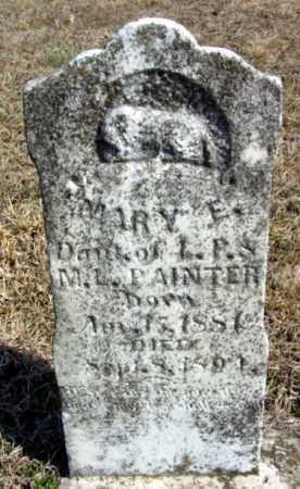 PAINTER, MARY E. - Fulton County, Arkansas | MARY E. PAINTER - Arkansas Gravestone Photos