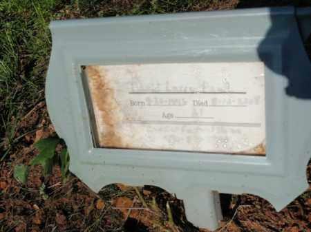 PAUL, DAVID LARRY - Fulton County, Arkansas | DAVID LARRY PAUL - Arkansas Gravestone Photos