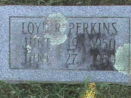 PERKINS, LOYD R - Fulton County, Arkansas | LOYD R PERKINS - Arkansas Gravestone Photos