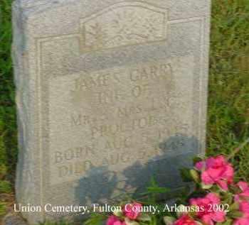 PROCTOR, JAMES GARRY - Fulton County, Arkansas | JAMES GARRY PROCTOR - Arkansas Gravestone Photos