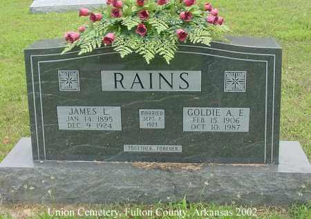 RAINS, JAMES L. - Fulton County, Arkansas | JAMES L. RAINS - Arkansas Gravestone Photos
