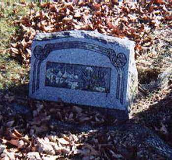 SHARP, HETTIE LUCINDA LOUISA - Fulton County, Arkansas | HETTIE LUCINDA LOUISA SHARP - Arkansas Gravestone Photos